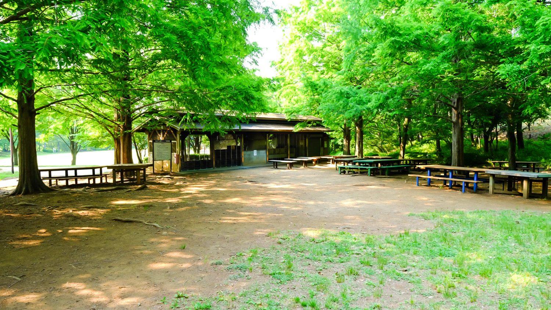 キャンプ練習場